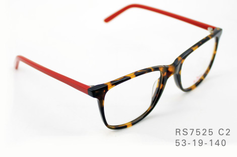 RS7525 C2 53-19-140 (1)